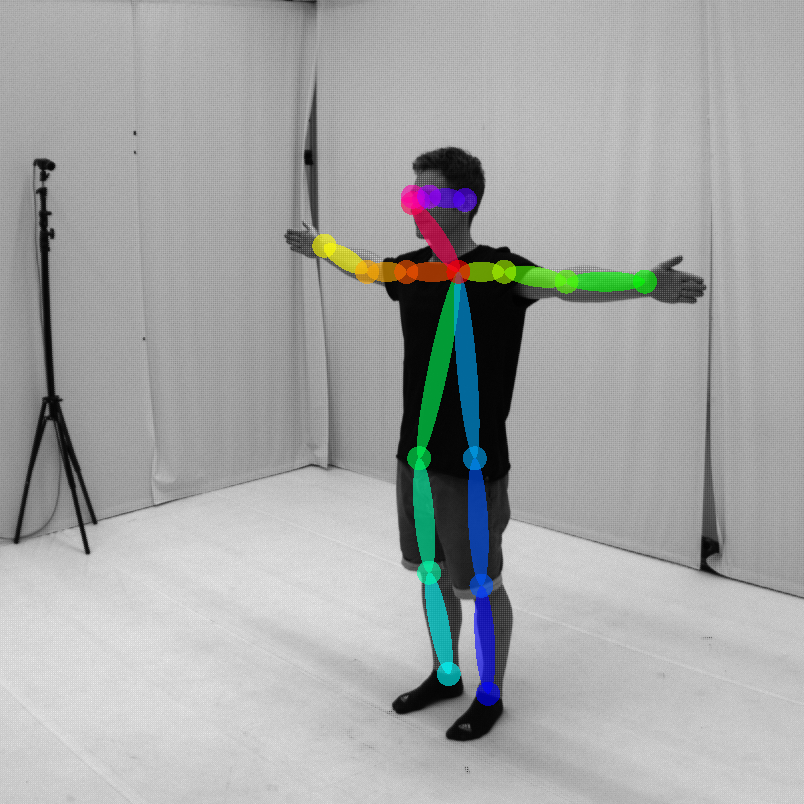 MotionSynth: Digital Synthesis of Human Motions