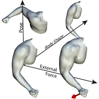 Capture and Statistical Modeling of Arm-Muscle Deformations